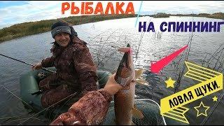 Такого на блесну я еще не ловил/ Ловля щуки осенью/ Отличная рыбалка на спиннинг/