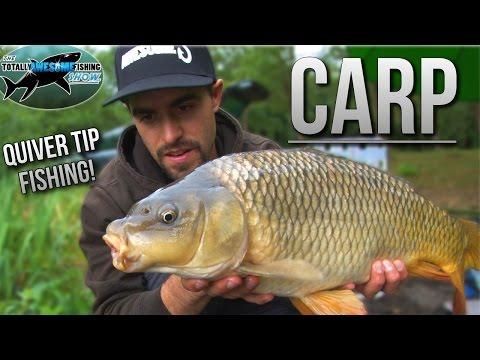 Carp Fishing With A Quivertip Rod | TAFishing