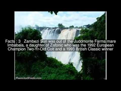 Zambezi Sun Top  #10 Facts