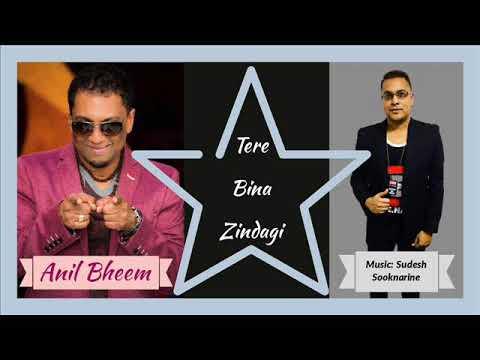 Tere Bina Zindagi - Anil Bheem [2018]