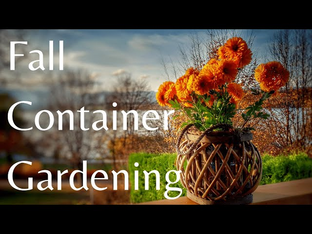 Fall Container Gardening with Rebecca Topping