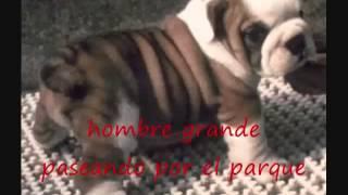 HEY BULLDOG Beatles subtitulos en español