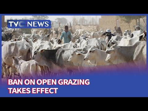 [Journalists Hangout] Ban On Open Grazing Takes Effect - Nigeria | 1 Sept 2021