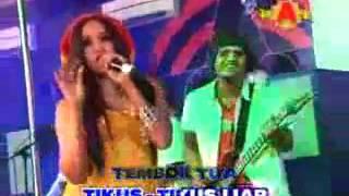 Lagu Sayidan (Ver.Dangdut Koplo) Elsa Savira