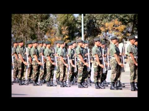 I wish i was a Blue Job              (Rhodesian Light Infantry)