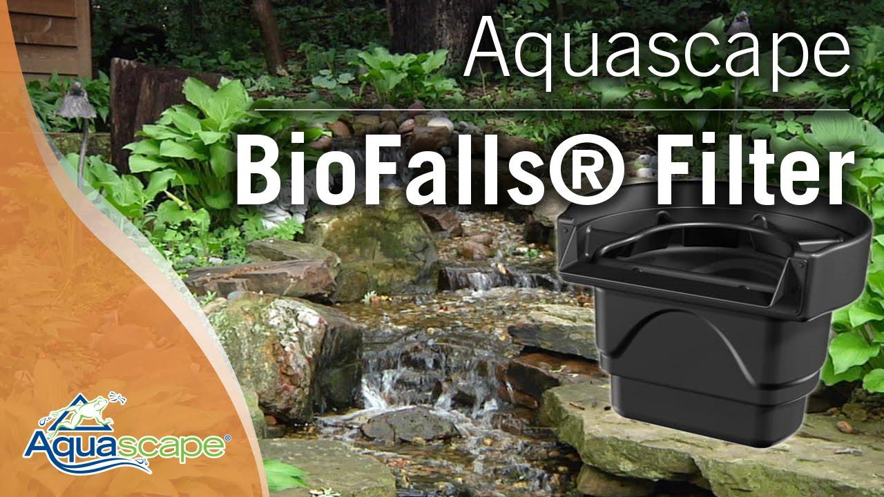 Bon Aquascape Biofalls® Filter   YouTube