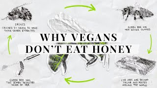 Why don't vegans eat honey?