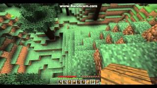 Minecraft Survival Bölüm 1 -  Minik yuva ve Hain köpekler