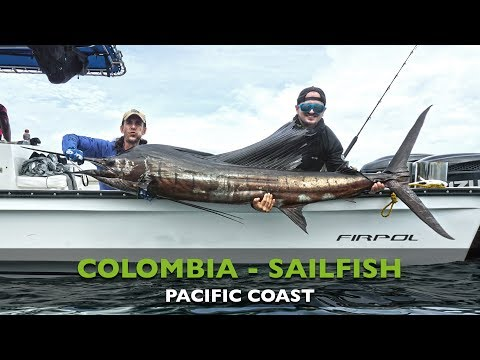 COLOMBIA - SAILFISH - PACIFIC COAST
