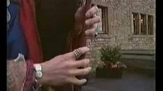 Corvus Corax Saltarello Venusti