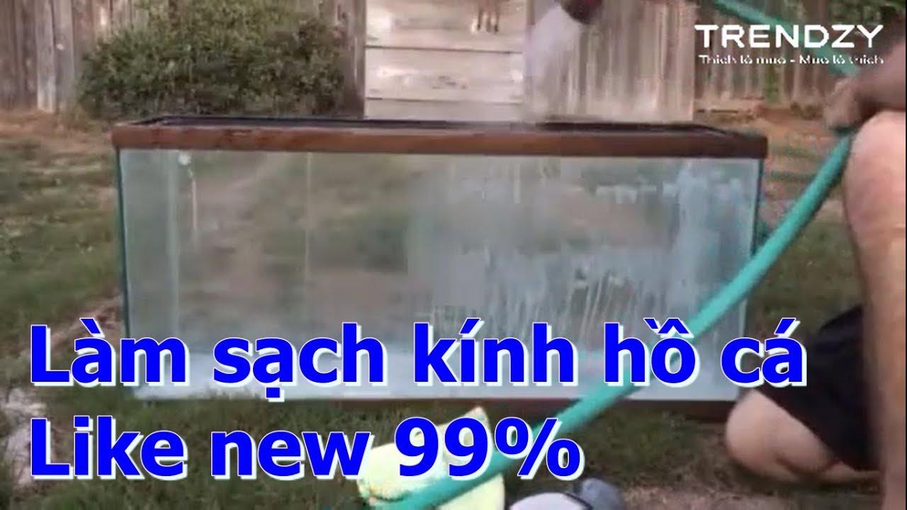 Làm sạch kính bể cá như mới 99% | Làm sạch kính hồ cá | Bột làm sạch BKF