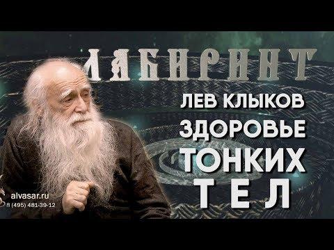 ЛАБИРИНТ   Лев