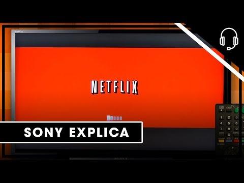 Sony  Suporte Bravia Theater  Bluray Netflix