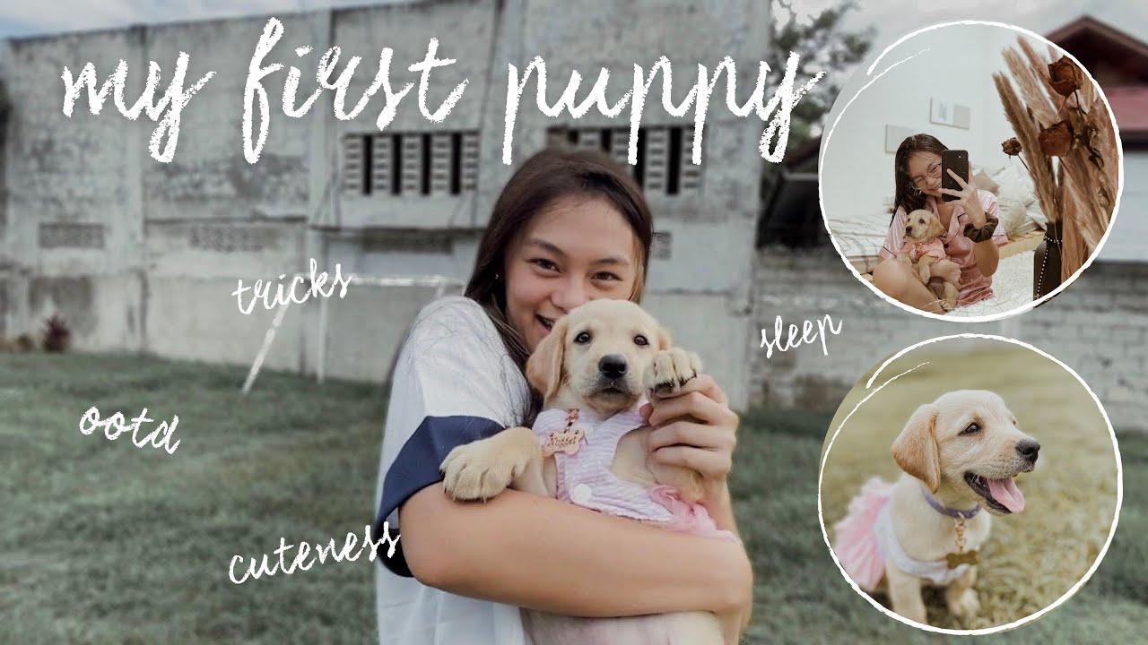 MY FIRST PUPPY! (CUTEST VLOG EVER) || MICHELLE G.