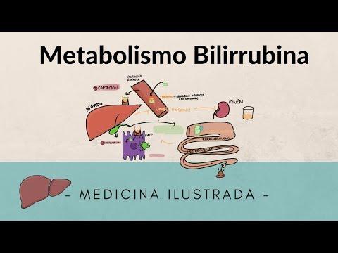 Albert Einstein en las recetas de la dieta del metabolismo acelerado