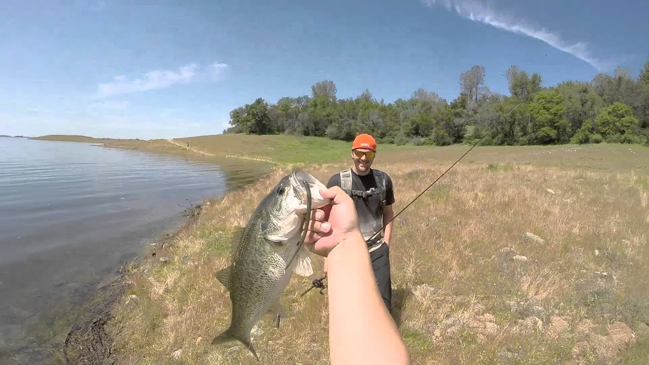 Folsom lake 2016 a lil bass fishing and fun with my lil for Folsom lake fishing report