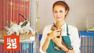25 INSANE Facts About Animal Shelters