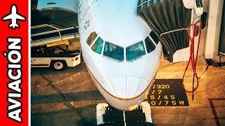 EXPERIENCIA DE VUELO a Estados Unidos con American Airlines   Alex Tienda ✈️