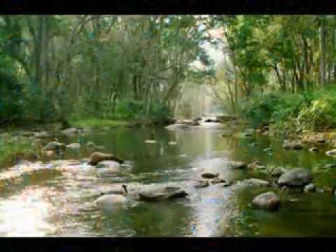 Rahman theme for God's own country Kerala