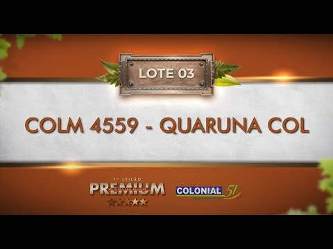 LOTE 03   COLM 4559