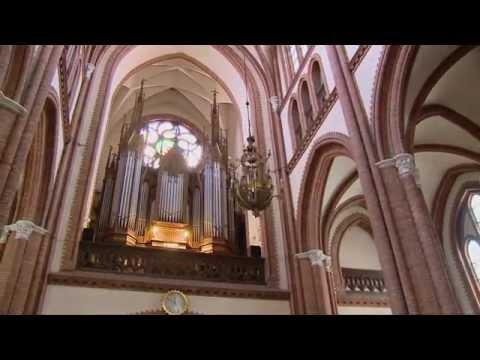 Podlaskie: XX Katedralne Koncerty Organowe 10.07-21.08.2015