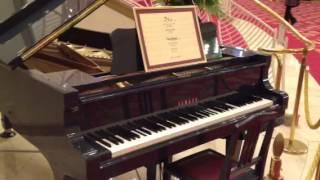 2012.11.01 宝塚大劇場 月組公演 -JIN- 自動演奏ピアノです。