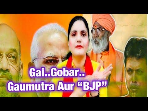 Politics Of Gai..Gobar And Gaumutra ?