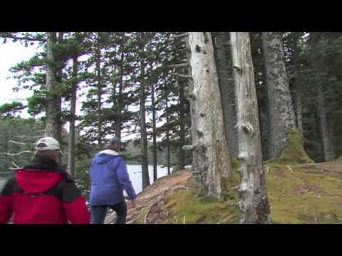 Kodiak Alaska's Emerald Isle.mov