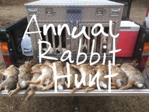 Annual Rabbit Hunt - South Carolina