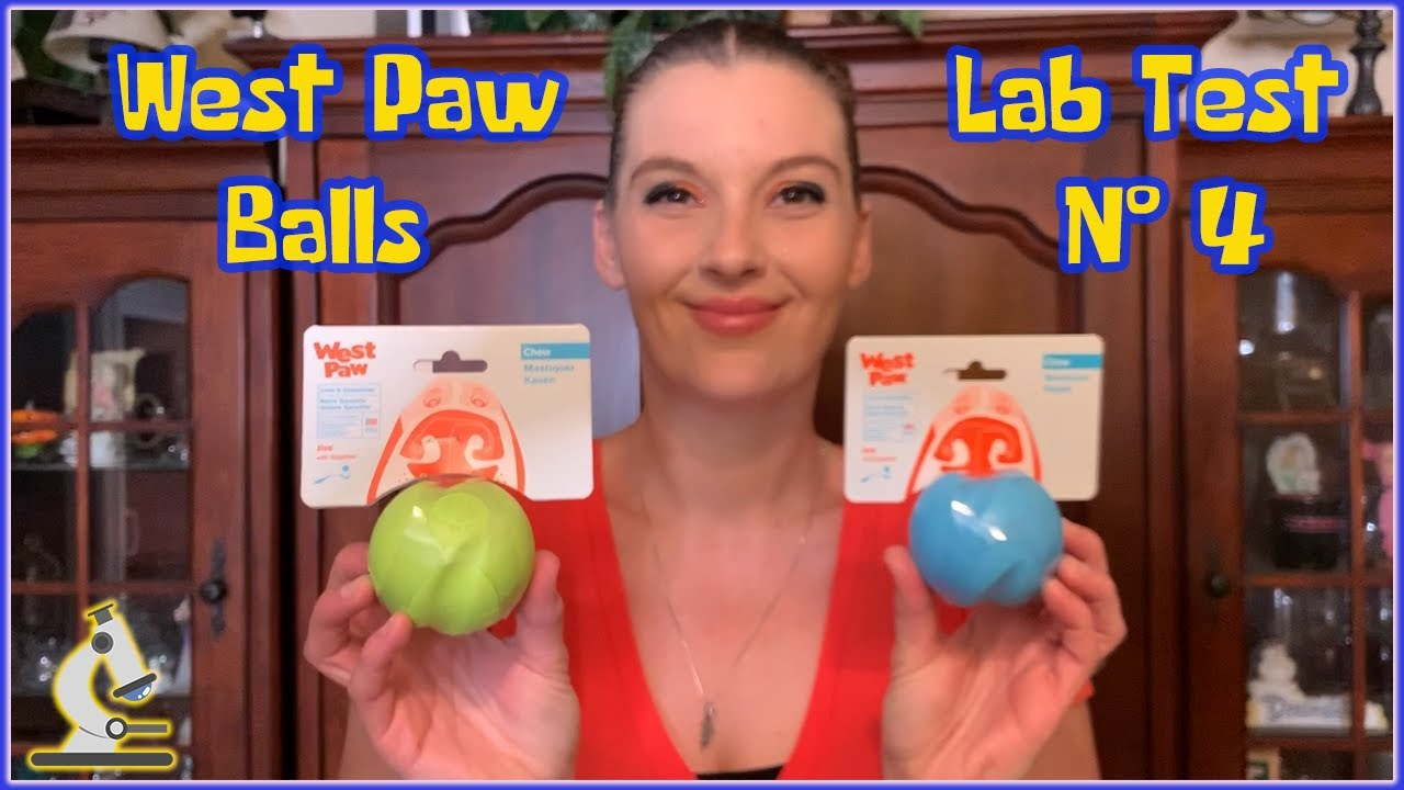 THE TOY LAB - TEST #4 - West Paw Balls