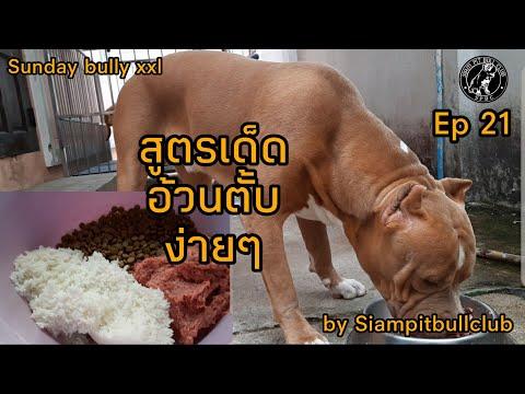 #สูตรเด็ดง่ายๆ  #Siampitbullclub  #สยามพิทบูลคลับ