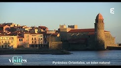 Le port de Collioure - Visites privées
