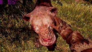 Far Cry Primal R9 290X - I7 5930K