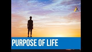 Purpose and Meaning of Life - Response to Ex Muslims (Ahmadiyya)