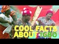 Download Top 5 coolest facts about the Igbo people in Mp3, Mp4 and 3GP