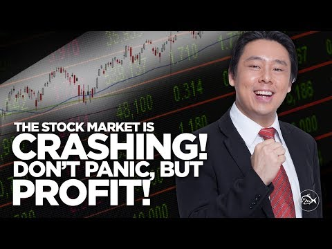 The Stock Market is Crashing! Don't Panic, But Profit! By Adam Khoo