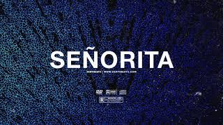 free-senorita-santan-dave-x-fredo-type-beat-free-beat-uk-afroswing-instrumental-2019