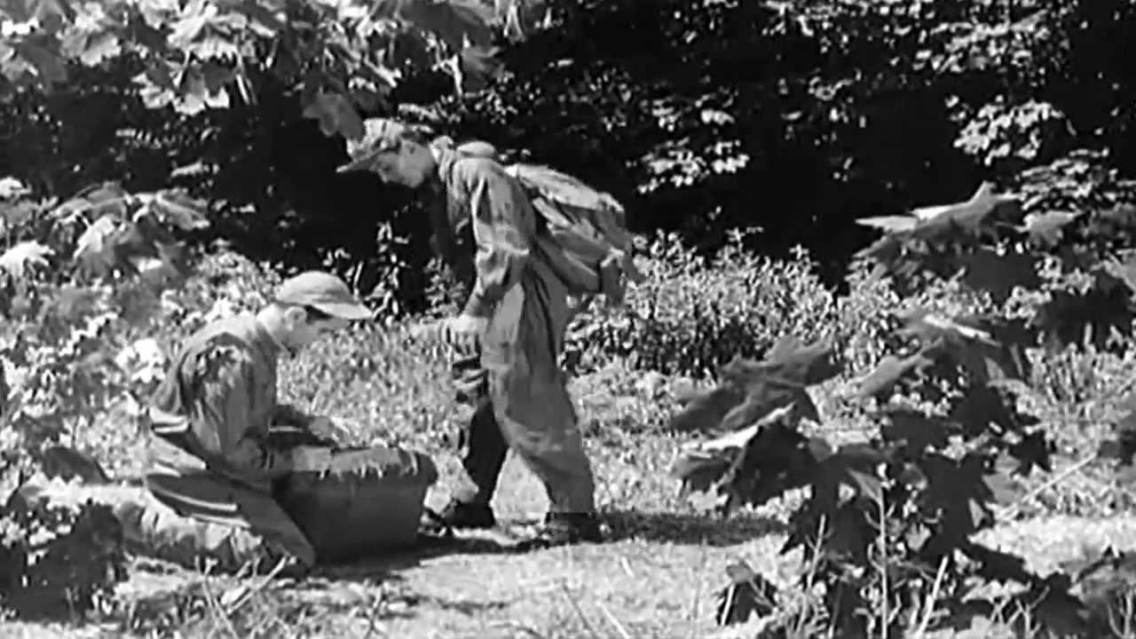 EVASION - Evading capture for downed US Airmen - 1950