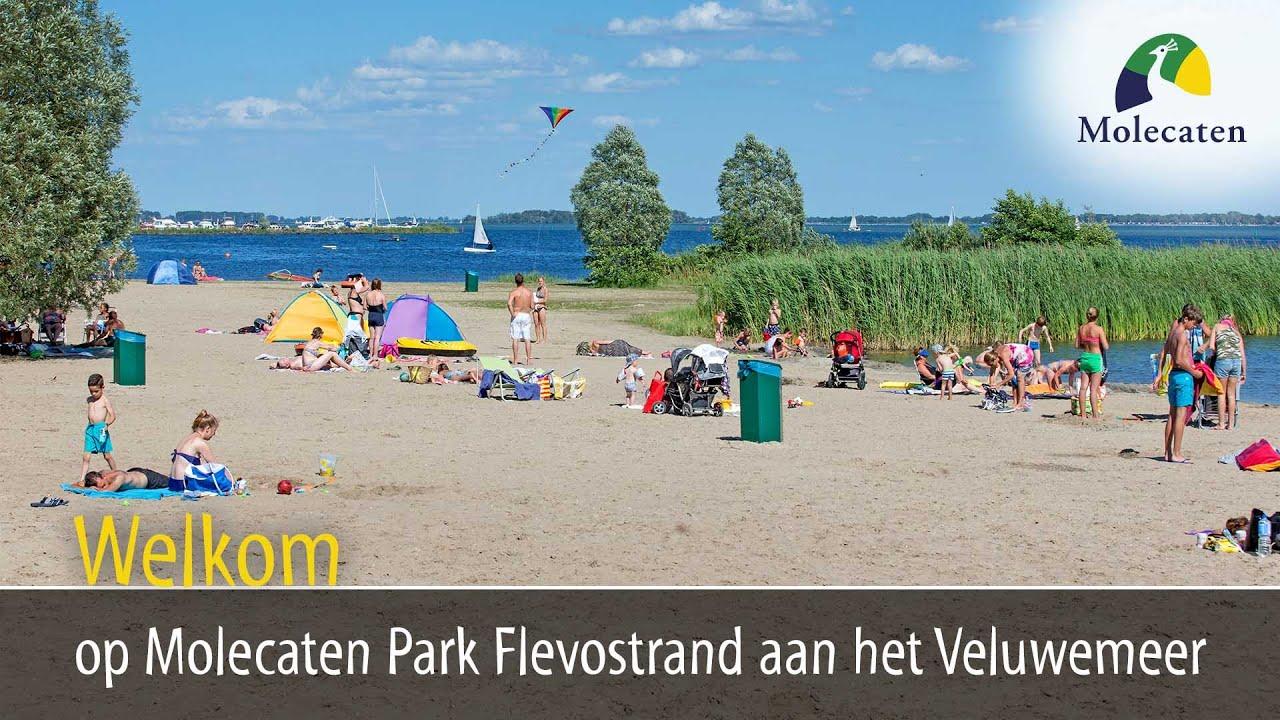Welkom op Molecaten Park Flevostrand, tegenover Harderwijk ...  Welkom op Molec...
