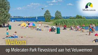 Welkom op Molecaten Park Flevostrand, tegenover Harderwijk, Veluwemeer