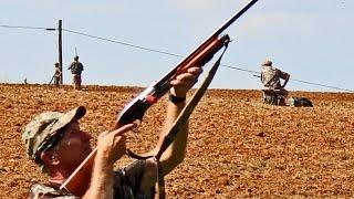 Labor Day Dove Hunt