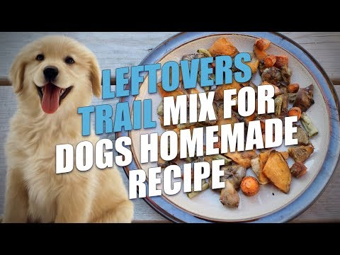 Leftovers Trail Mix for Dogs Homemade Recipe