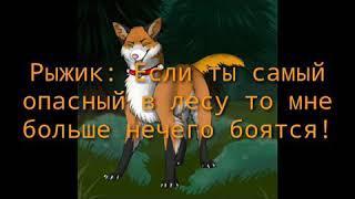 """Сериал по книге: """"Коты - Воители. Стань диким!"""" 2 часть"""