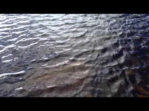 Evans Lake 3