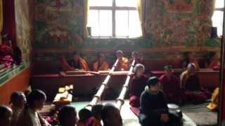 Tibetan Buddhist monks chanting in monastery in Nepal during a special puja
