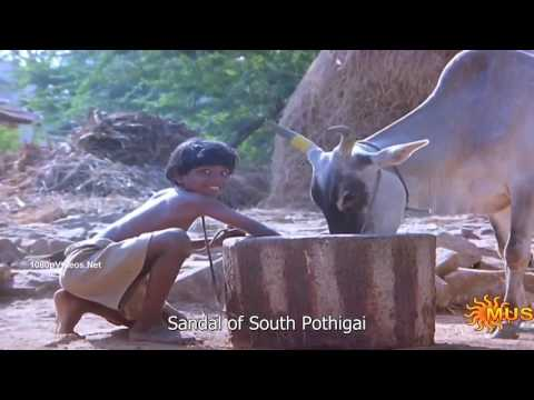 Shenbagame Shenbagame Tamil Song with English Subtitles