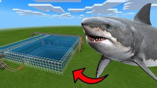 MCPE: How To Make a SHARK ROLLER COASTER