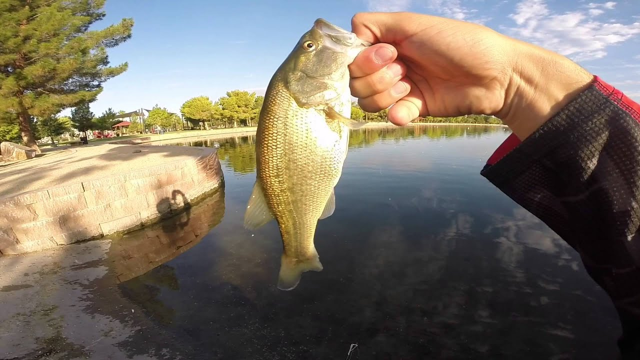 Winter bass fishing plastic worms youtube for Best plastic worms for bass fishing