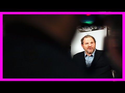 Breaking News | Weinstein's contract reportedly allowed for him to commit ual harassment, tmz repor
