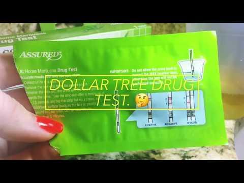 Dollar Tree (live Drug Test)